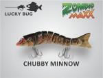 chubby minnow