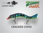 cracked coho
