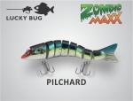pilchard