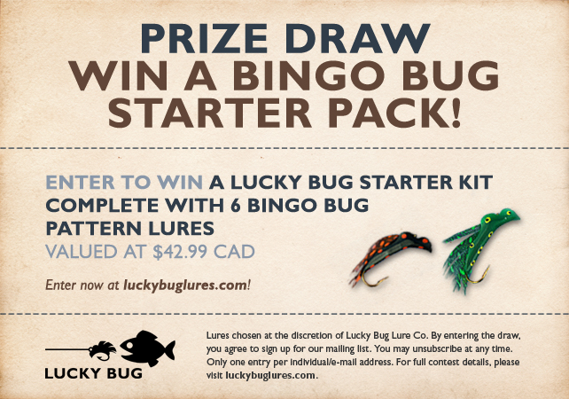 Prize Draw: Win a Bingo Bug Starter Pack!